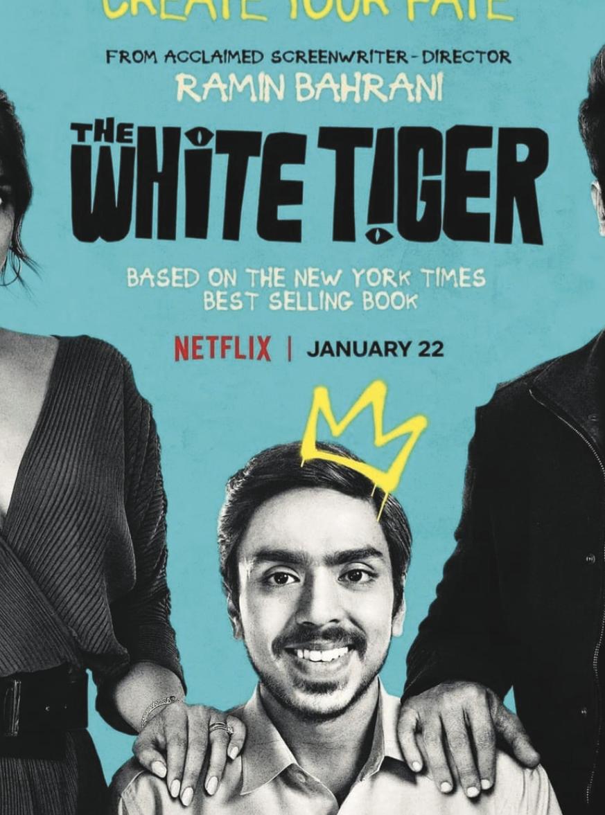 white tiger 白老虎